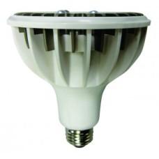 PAR 38C‐16W‐(Pack of 2 lamps) by Zenaro